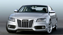 Audi and Mercedes Styled Grille Inserts by AK Car-Design - 'The second face'