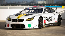 BMW M6 GTLM turned into an Art Car