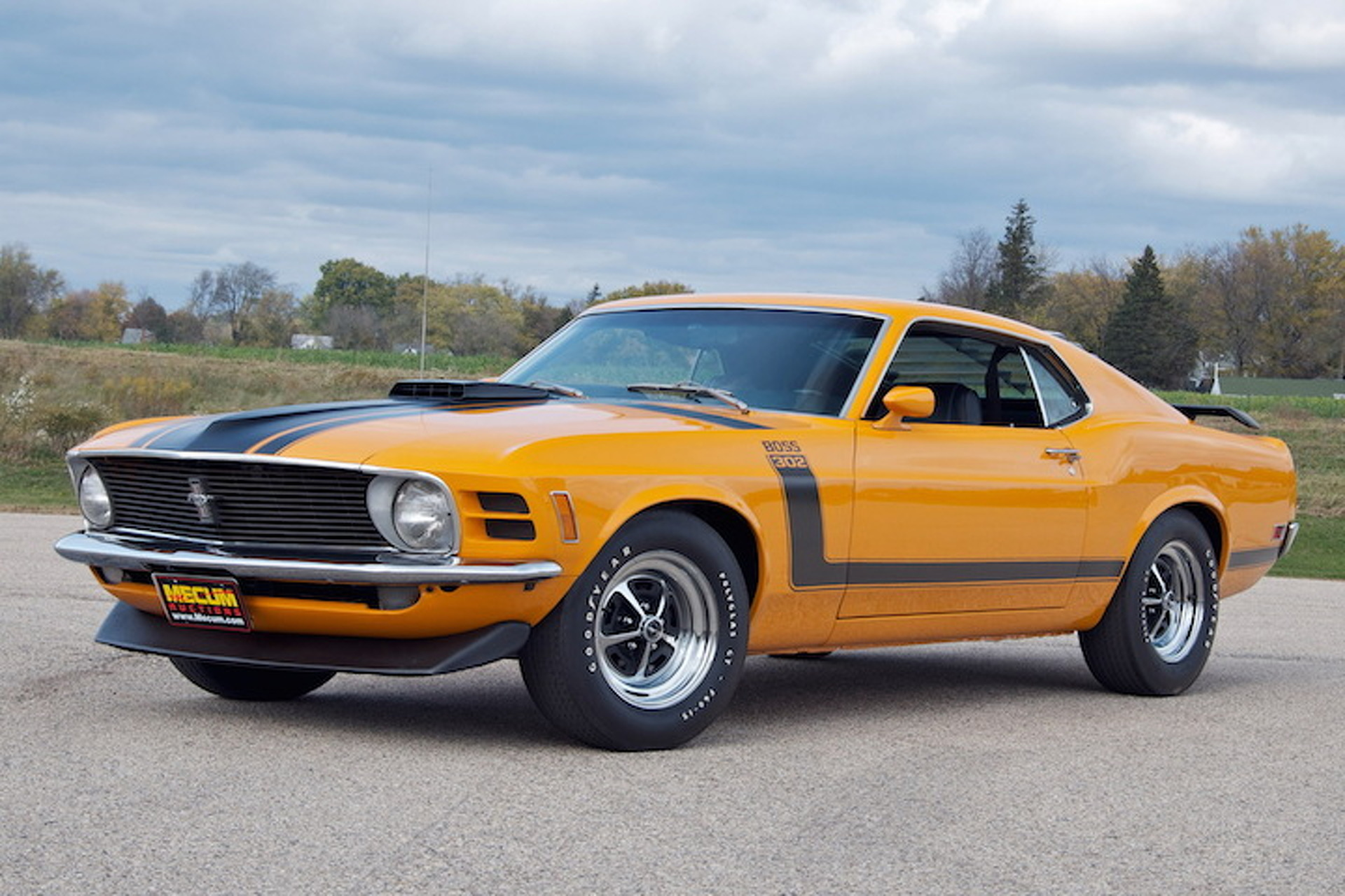 2015 Mustang Colors >> 8 Great Ford Mustang Boss 302 Colors