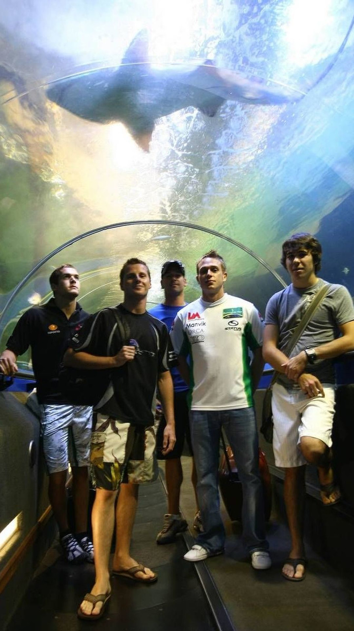 A1GP Drivers at the shark dive tank at Ocean world, 31.01.2008 Sydney, Australia