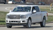 2019 Ford F-150 Limited Spy Photos