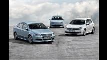 Knauseriges VW-Trio