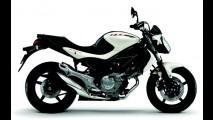 Suzuki Gladius 650 passa a ser oferecida na cor branca