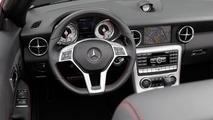 2012 Mercedes SLK 250 CDI - 3.11.2011