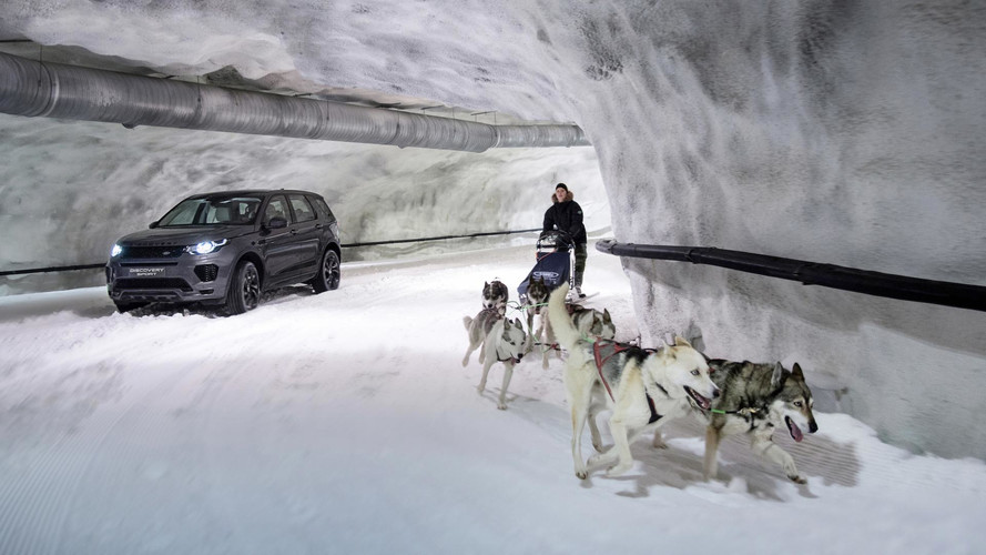 Land Rover Discovery Sport Takes On Dog Sled Team