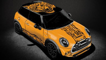 2014 MINI Cooper LILY By Thomas G.