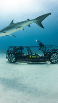 Volkswagen Beetle Convertible shark cage unveiled for Shark Week