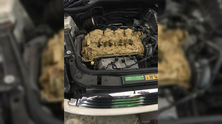 Mini Owner Pours 1.3 Gallons Of Window Washer Fluid Into Engine