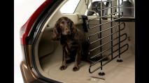Volvo porta il cane in vacanza