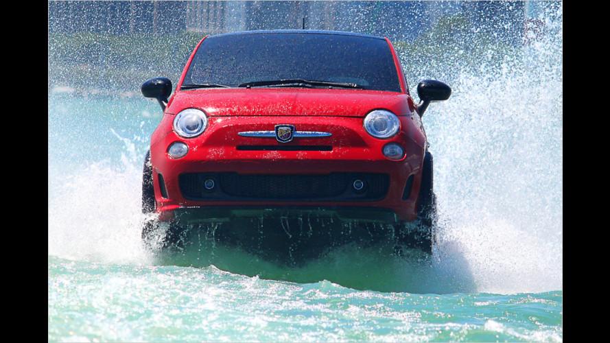 Surfin` Fiat