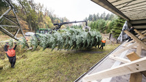 Mercedes yılbaşı ağacı