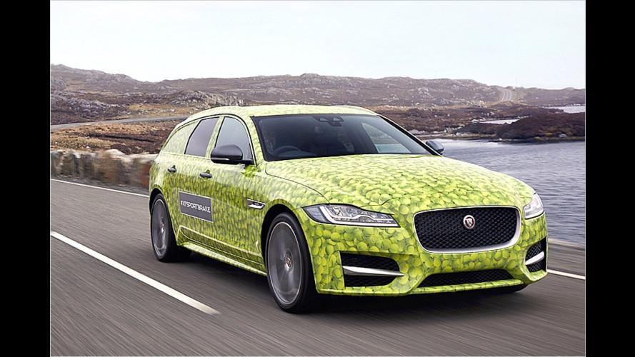 Jaguar XF Sportbrake: Der Kombi kommt