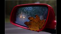 Vorsicht im Herbst