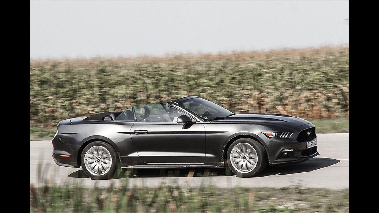 Platz 1: Ford Mustang, 780 Neuzulassungen