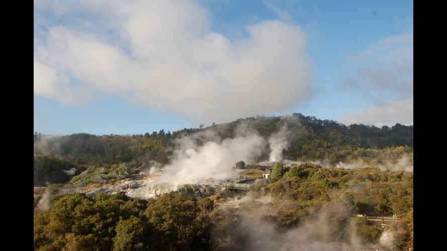 In Nuova Zelanda con OmniAuto.it!