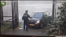 Did Dutch Princess Beatrix crash outside her castle?