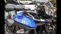 Nova Triumph Tiger 800 chega em abril por R$ 42.190