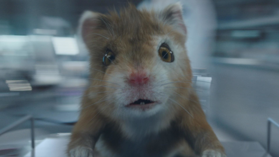 Kia's Hamsters Return With A Little One In Eighth Commercial