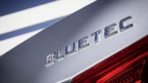 Mercedes E 220 BlueTEC BlueEFFICIENCY Edition 09.8.2013