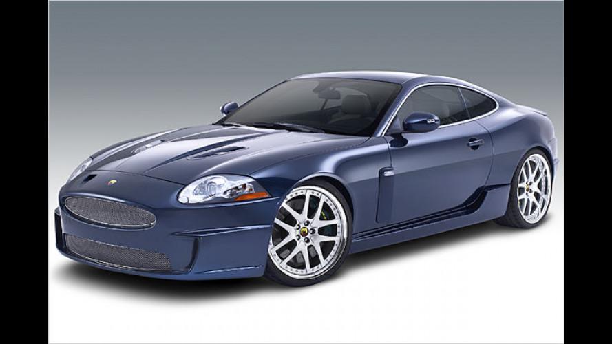 Raubkatze mit mehr Muskeln: Arden powert den Jaguar XKR