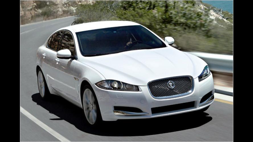 Jaguar XF: Facelift und erstmals als Vierzylinder