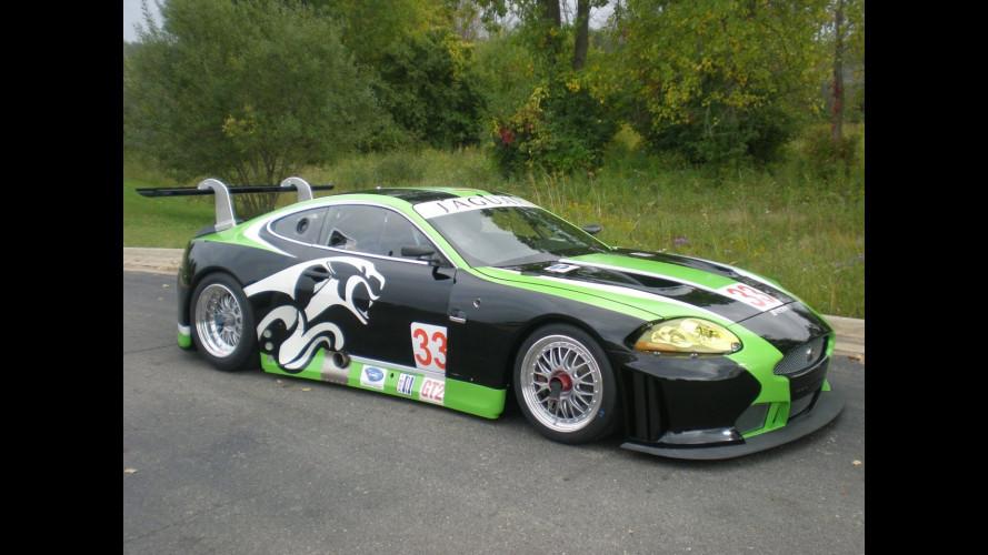 Jaguar XKR GT2: 2010 nella ALMS