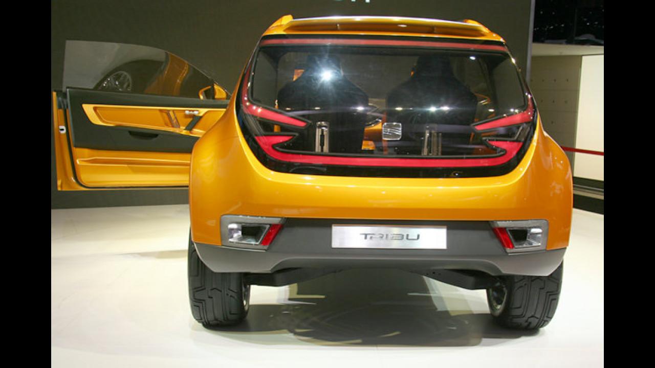 Ja, die Studie Seat Tribu wurde vom Lamborghini-Designer Luc Donckerwolke gezeichnet