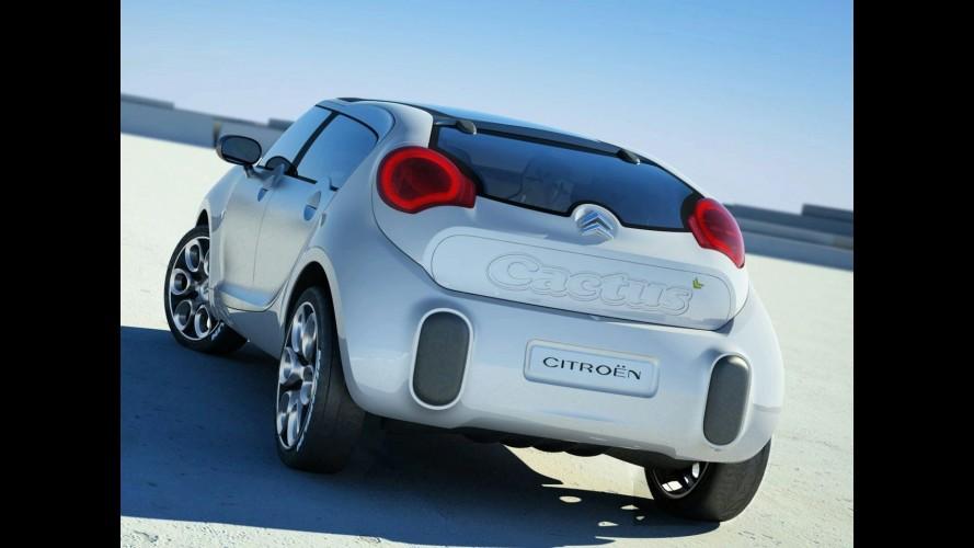 Sucessor do Citroën C3 será inspirado no conceito C-Cactus
